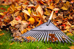 fall-cleanup-services-in-bergen-county